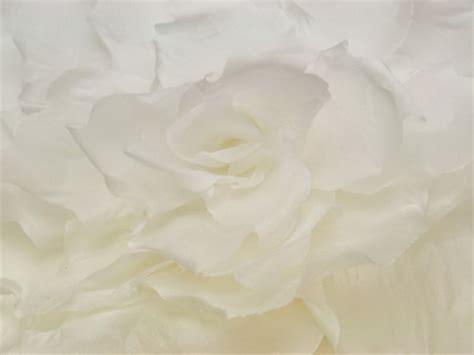 fiori di seta per abiti fiori per abiti da sposa
