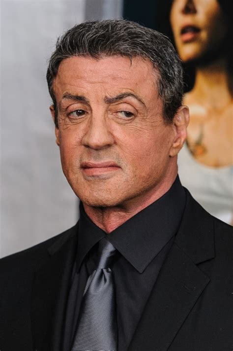 sylvester stallone sues contractor and blames lisa yolanda foster s ex husband mohamed hadid claims sylvester