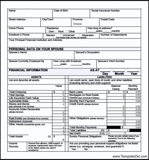 statement template pdf pdf personal financial statement form templatezet