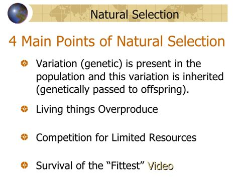 what is natural section evolution natural selection taxonomy and anthropology