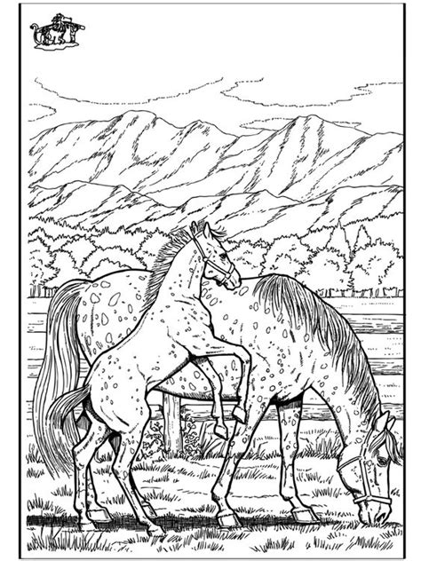 wild horse coloring pages of funnycoloring com
