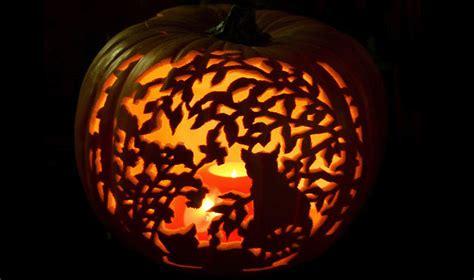100 pumpkin carving ideas 100 pumpkin carving ideas digsdigs