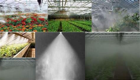 nebulizzatore giardino nebulizzatore irrigazione tipologie e differenze dei