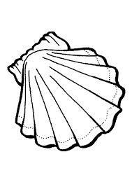 sea shell stencil google search coloring pages