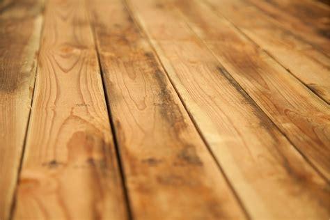 Caring For Hardwood Floors Caring For My Hardwood Floors In Winter Morris Flooring