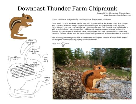 printable chipmunk targets downeast thunder farm our little patch of woods in