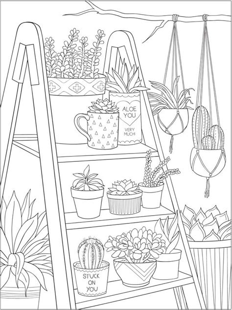 dover publications ch stunning succulents