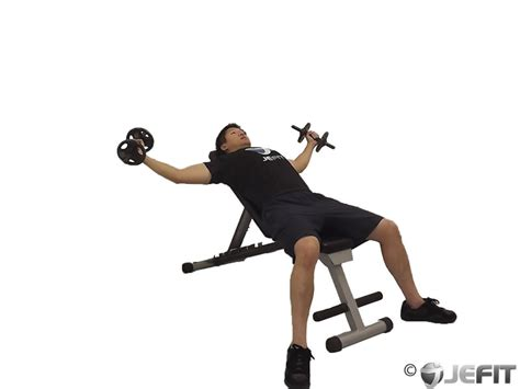 flat bench dumbell flys dumbbell flat bench fly benches