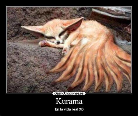 Mozilla Kurama im 225 genes y carteles de kurama pag 3 desmotivaciones