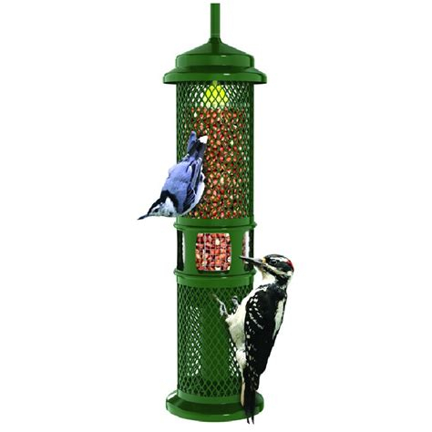 Best Bird Feeder Squirrel Proof bird feeders for small birds only for songbirds