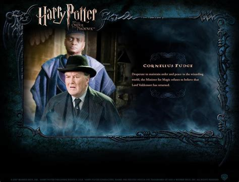 biography of harry potter hp bio harry potter movies photo 1759571 fanpop
