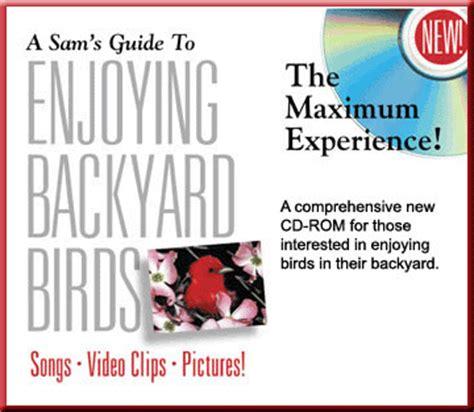 the backyard birdsong guide sam s guide to backyard birds