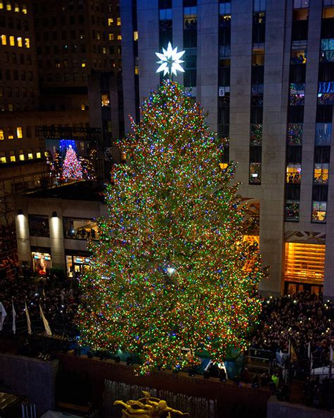 rockefeller center christmas tree facts what to know