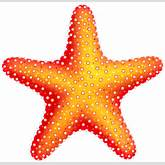 Starfish PNG Clip Art - Best WEB Clipart