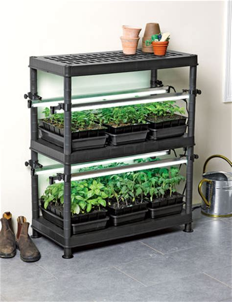 Grow Light System by Choosing A Grow Light System For Growing Tomatoes From Seed
