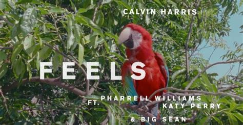 download mp3 feels by calvin harris calvin harris feels features katy perry big sean and
