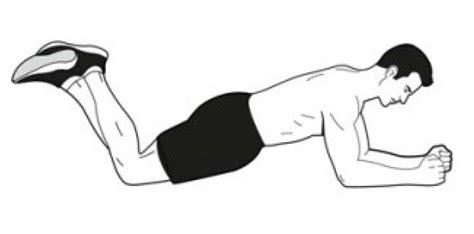 plank exercise diagram siskiyou lower crossed siskiyou
