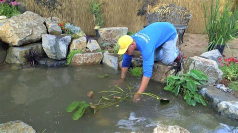 how to build a fish pond in your backyard how to build a fish pond part 21 pond plants