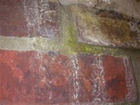 trägerplatten für putz reinigen und pflegen klinker f 195 188 r fassade und boden