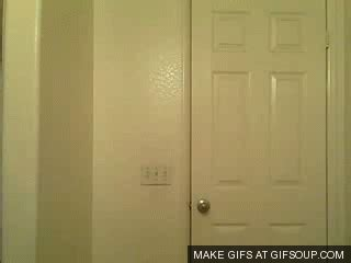 door closed gifs find share the open door gif find share on giphy