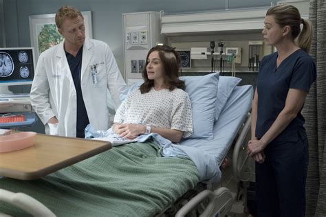 grey s anatomy cast offers hope for couples of grey sloan ain t that a kick in the head grey s anatomy s14e04 tvmaze