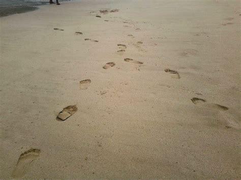 Diary Cinta Sally Sebelah Toko pantai jejak jejak yang terserak