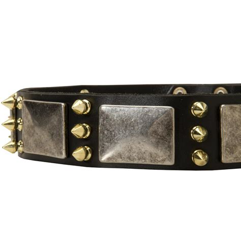 rottweiler leather collars leather rottweiler collar with nickel plates and brass spikes rottweiler store