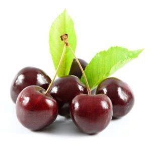 can dogs cherries can i give my a cherry are cherries okay for dogs to eat