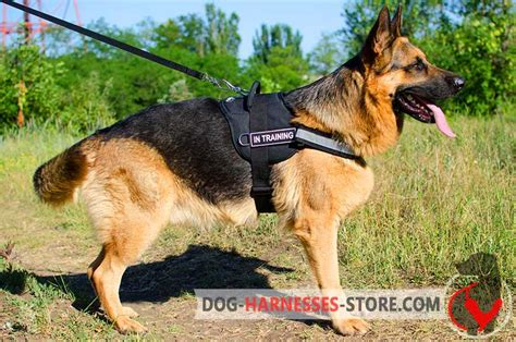 german shepherd service black russian terrier harness for and service dogs with handle h6p 1092