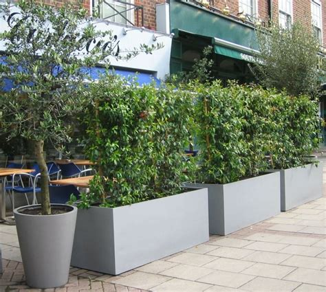 geo fibreglass trough planters from potstore co uk