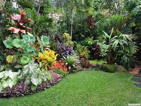 tropical plants for backyard 25 best ideas about tropical landscaping on