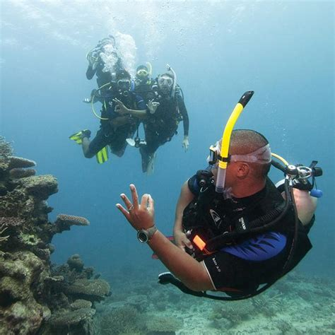 dive master padi padi divemaster course scuba diving in miami fl best