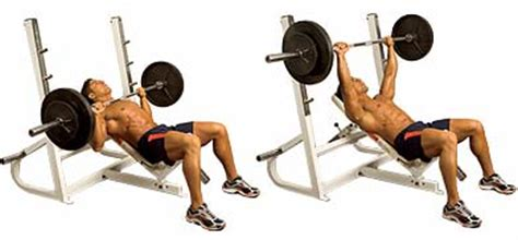 incline bench barbell press gym inspiration com barbell incline chest press