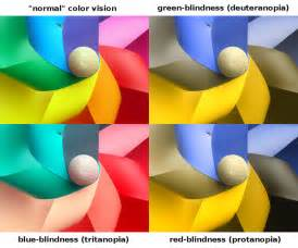color blind types explainer what is colour blindness