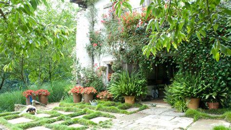diferentes plantas para decorar fachadas decogarden - Decorar Fachadas Con Plantas
