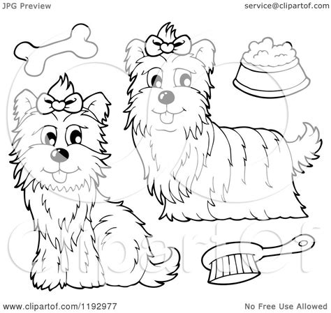 coloring page yorkie poo yorkie poo dog pages coloring pages