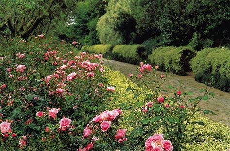 giardino pensile definizione giardini della landriana apgi