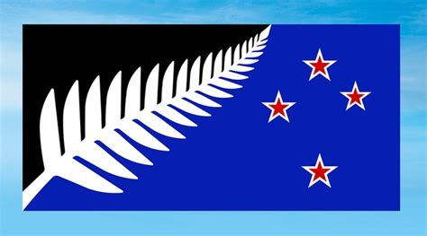 online design stores new zealand new zealand picks new flag design to challenge current
