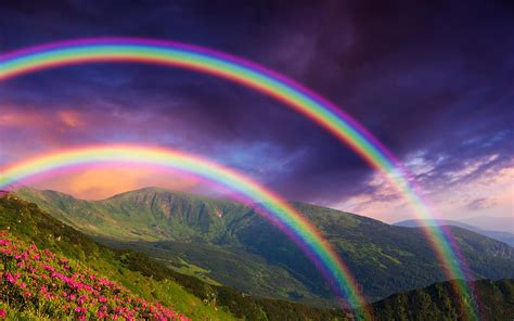 Rainbow Wallpapers rainbow hd wallpapers