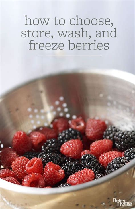 how to choose store wash and freeze berries burn belly fat fat burning and berries