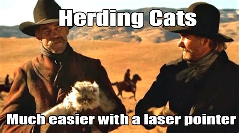Herding Cats Meme - atheists need community