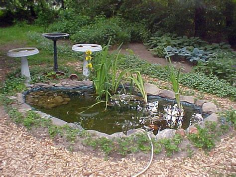 how to build a small pond in your backyard small patio pond ideas landscaping gardening ideas