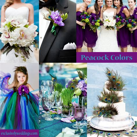 Your Wedding Colors ? Peacock   Exclusively Weddings Blog