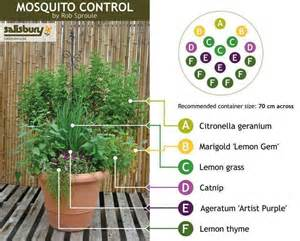 Natural Backyard Mosquito Control Natural Mosquito Control For The Yard Gardening Pinterest