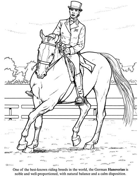 coloring pages of race horses 60 best images about color horses competition on