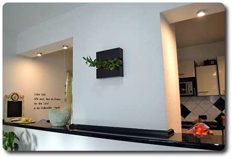 Pflanzen An Der Wand by Echte Pflanzen An Der Wand Update Der Flowerboxen