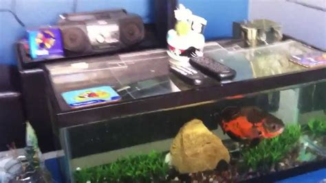 diy aquarium coffee table diy coffee table fish tank