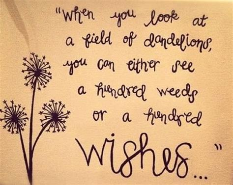 Dandelion Wishes quotes about bible verse dandelion wishes quotesgram