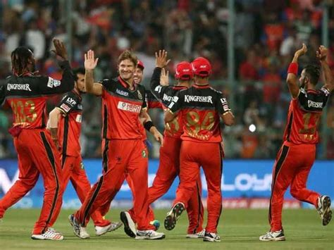 ipl rcb team in 2017 ipl 2017 team profile royal challengers bangalore ndtv