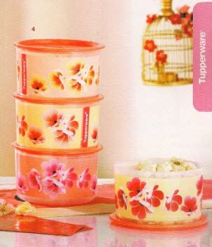 Tupperware Plum Collection Set modern carino tupperware new year limited release